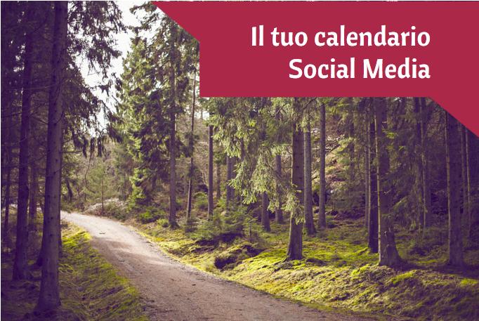 calendario social